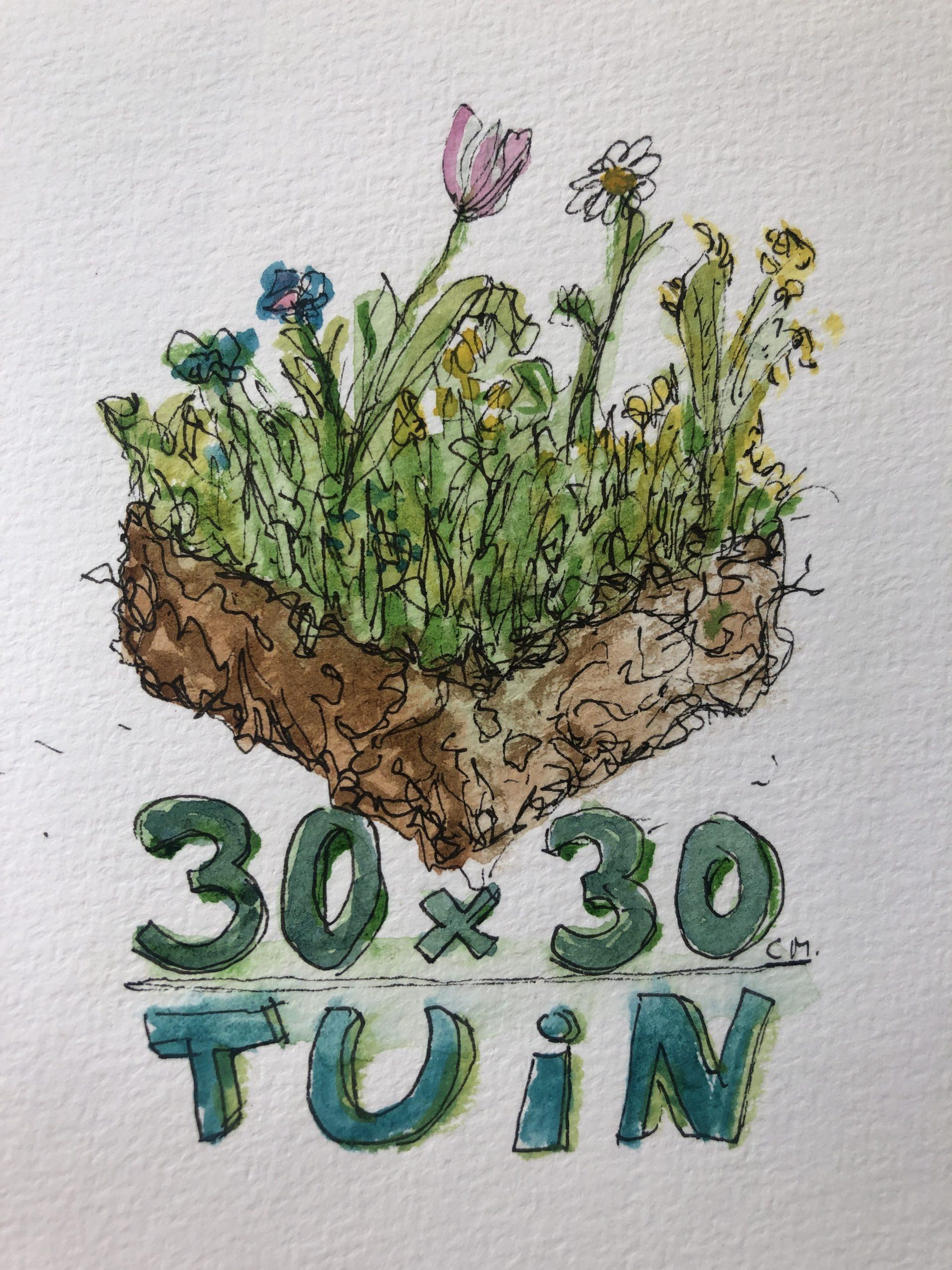 30×30 Tuin